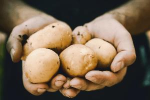 maseczka z ziemniaka na problemy z ustami
